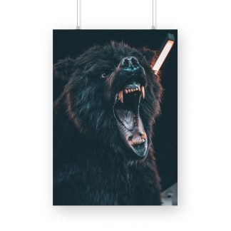 Growling brown bear with black background