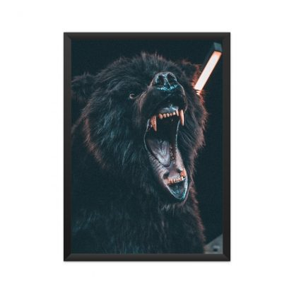 black framed poster of Growling brown bear with black background